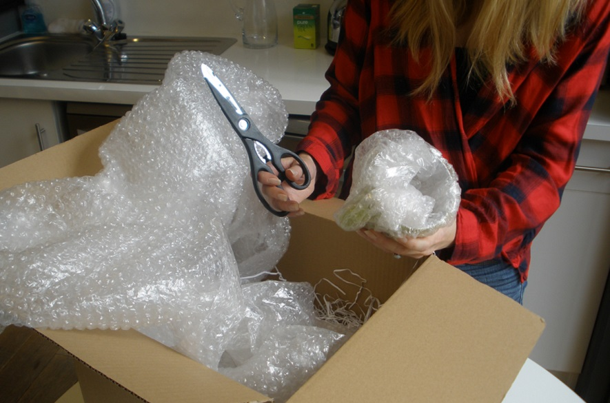 Unboxing Package