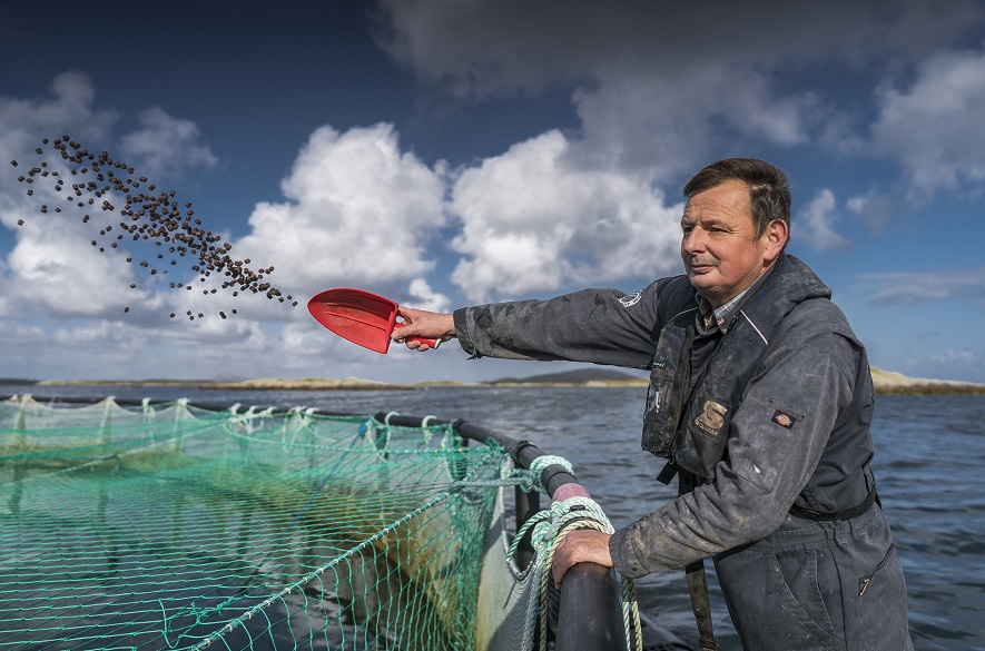 Man throwing fish feed into water